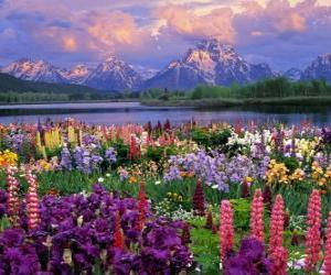 Rompicapo di Paesaggio in primavera