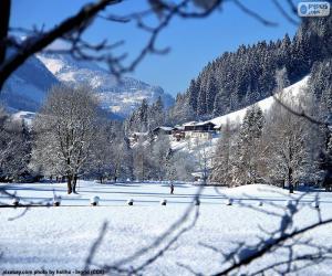 Rompicapo di Paesaggio invernale