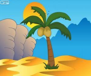 Rompicapo di Palma, albero nell'oasi del deserto
