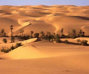 Rompicapo di Palme nelle dune del deserto