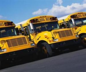 Rompicapo di Parcheggio Scuola bus