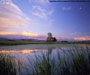 Rompicapo di Parco nazionale di Lee Metcalf, Montana, Stati Uniti