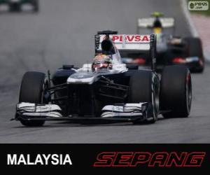 Rompicapo di Pastor Maldonado - Williams - Sepang 2013