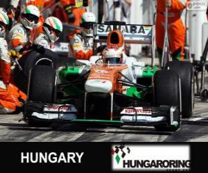 Rompicapo di Paul di Resta - Force India - Hungaroring, 2013