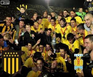 Rompicapo di Peñarol di Montevideo, campione della prima divisione di calcio 2012-2013, Uruguay