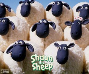 Rompicapo di Pecore del gregge di Shaun