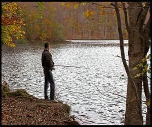 Rompicapo di Pesca - Pescatore di fiume in azione in un paesaggio boscoso
