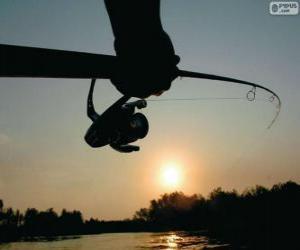 Rompicapo di Pesca sportiva