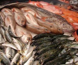 Rompicapo di Pesce fresco vario