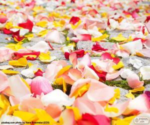 Rompicapo di Petali di rosa, matrimonio