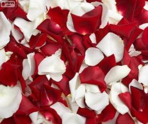 Rompicapo di Petali di rosa