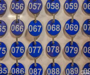 Rompicapo di Piastre di numerato