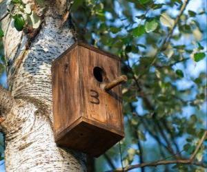Rompicapo di Piccola casa di legno per gli uccelli in primavera
