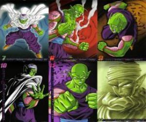 Rompicapo di Piccolo figlio Piccolo mostro Daimao, nato per vendicarsi di Goku. Viene dal pianeta Namek. E il primo insegnante di Gohan.