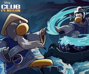 Rompicapo di Pinguini Ninja, personaggi del celebre Club Penguin