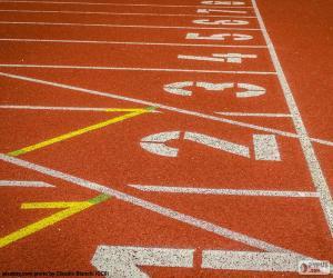 Rompicapo di Pista atletica 100 m