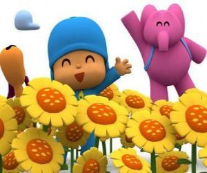 Rompicapo di Pocoyo ei suoi amici in un campo di girasoli