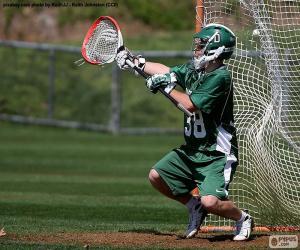 Rompicapo di Portiere di lacrosse