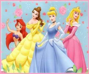 Rompicapo di Principesse Disney