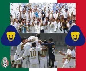 Rompicapo di Pumas UNAM, campione del Clausura 2011 Messico
