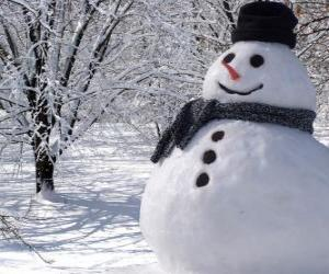 Rompicapo di Pupazzo di neve con cappello e sciarpa