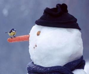 Rompicapo di Pupazzo di neve con un uccello sul suo naso