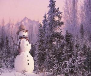 Rompicapo di Pupazzo di neve con una scena di neve