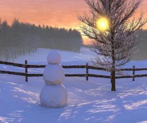 Rompicapo di Pupazzo di neve nel paesaggio