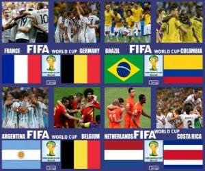 Rompicapo di Quarti di finale, Brasile 2014
