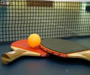 Rompicapo di Racchette e pallina da ping-pong