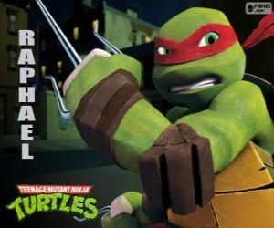 Rompicapo di Raffaello, la tartaruga ninja più aggressivo con le braccia in mano, un paio di Sai, una triplice pugnale