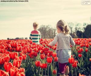 Rompicapo di Ragazze tra i tulipani
