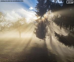 Rompicapo di Raggi di sole