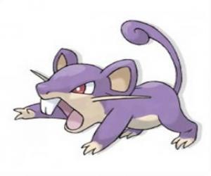 Rompicapo di Rattata - Pokémon tipo Normale, ratto d'attacco rapido