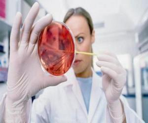 Rompicapo di Recerca farmaceutica