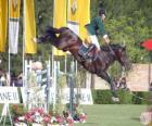 Equitazione - Cavallo e cavaliere nel esercizio de salto