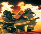 Vigile del fuoco con un ginocchio sul pavimento e il tubo pronto