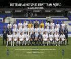 Formazioni di Tottenham Hotspur F.C. 2007-08