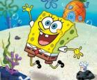 SpongeBob è una spugna di mare molto animata