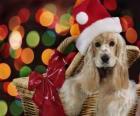 Cucciolo con Babbo Natale il cappello in un cestino