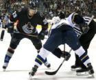 I giocatori in un match di hockey su ghiaccio