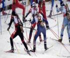 Il biathlon in uno sport invernale che combina cross-sci paese con tiro al bersaglio.