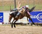 Cowboy a cavallo allevamento in un rodeo