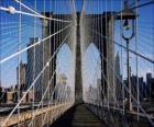 Ponte sospeso sul fiume, New York