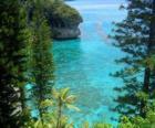 Scogliere e gli ecosistemi, l'arcipelago francese della Nuova Caledonia, situata nell'Oceano Pacifico.
