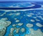 La Grande Barriera Corallina, le barriere coralline in tutto il mondo più grande. Australia.