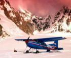 Cessna 185 sulla neve