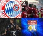 Coppa dei Campioni d'Europa - UEFA Champions League semifinale 2009-10, FC Bayern München - Olympique Lyonnais