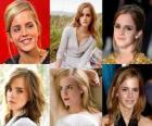 Emma Watson è stato conosciuto per il ruolo di Hermione Granger, una delle tre stelle della serie di film di Harry Potter