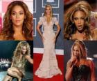 Beyoncé il successo del suo album da solista l'ha stabilito come uno degli artisti più commerciali nel settore della musica